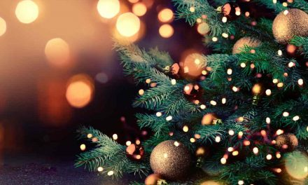 Weihnachtsbräuche – Andere Länder, andere Sitten