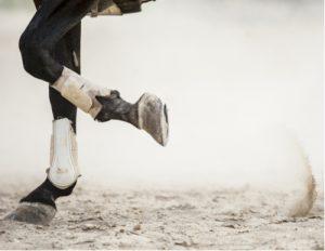 Einen Pferdefuß haben
