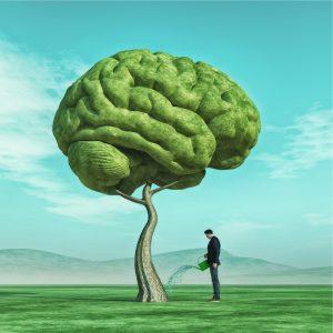 Gehirn wird wie ein Baum gegossen
