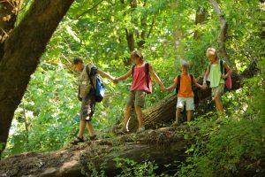 Kinder laufen über einen Baumstamm