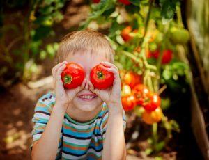 Junge hält sich Tomaten vor die Augen