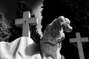 Kontrastreiches schwarz-weiß Foto. Aus der Froschperspektive ist ein weißes steinernes Kreuz auf einem Grab zu sehen und eine Statue von einem Hund aus selbigem Material.