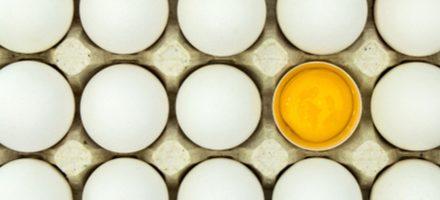 Warum sagen wir eigentlich…? Sprichwörter über das Ei