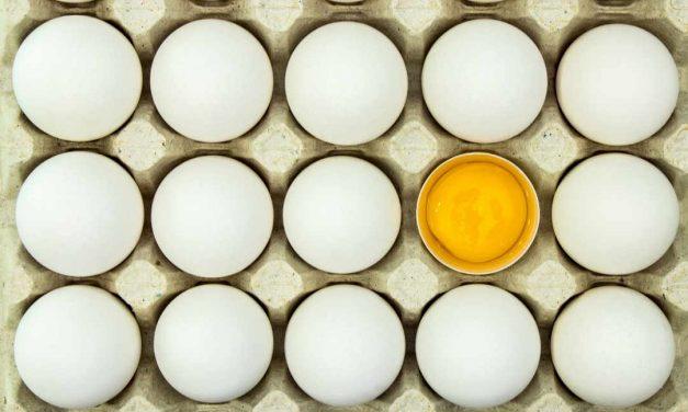 Sprichwörter über das Ei – Warum sagen wir eigentlich…?