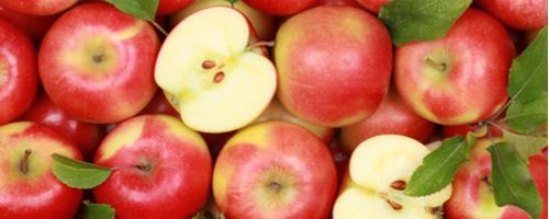 Warum sagen wir eigentlich…? Sprichwörter über den Apfel