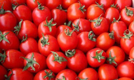 Sprichwörter über die Tomate – Warum sagen wir eigentlich…?