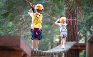 _Kinder klettern im Klettergarten - außerschulischer Lernort